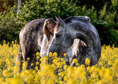 Paardenfotoshoot Eindhoven Maud & haar paard in de heide