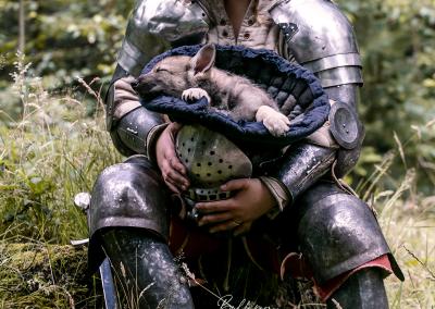 Hondenfotoshoot Cosplay thema ridders Nikki & Pup blauw slapend
